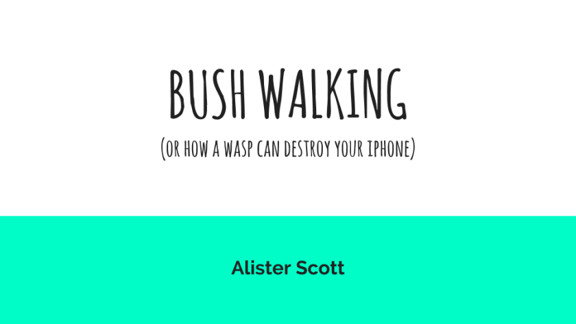 Bush Walking by Alister Scott (16)
